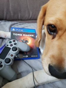 Shadow of the Tomb Raider Let's Play